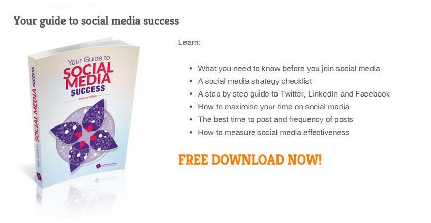 Social Media Success lead magnet